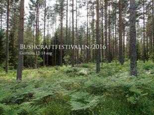 Foto: Bushcraftfestivalen